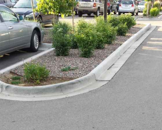 Curb & Gutters